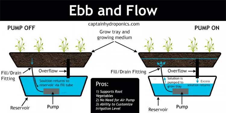 Teknik hidroponik ebb and flow