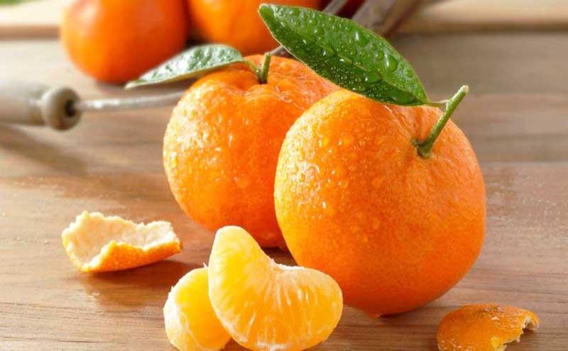 Buah jeruk sunkist